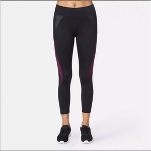 Michi Cropped Leggings with Sheer Panels
